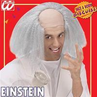 Adult\'s Einstein Headpiece