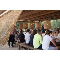 Athens Farm Dining Experience