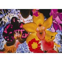 At The Far Edges of the Universe 05 By Marc Quinn