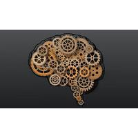 Cognitive Course Bundle