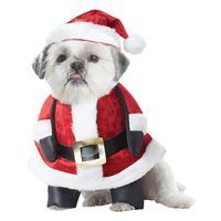 Fancy Dress - Santa Pup Dog Costume