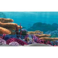 Finding Nemo Aquarium Poster Background 51 x 31cm