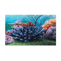 Finding Nemo Coral Reef Poster Background 51 x 31cm (20x12 inches)