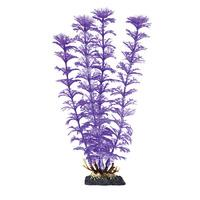 Finding Nemo Ambulia Purple Pearl Medium Plastic Plant