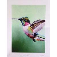 Hummingbird 4 By Martin Varennes-Cooke