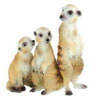 Meercat Group (WWF)