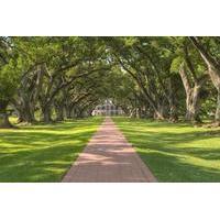 Oak Alley Plantation Tour With Private Transportation