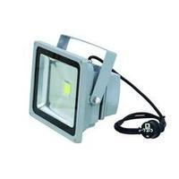 Outdoor LED spotlight Eurolite LED IP FL-30 No. of LEDs: 1 x 36 W