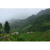 Private Daman Village Day Trip from Kathmandu