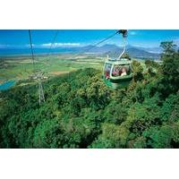 Skyrail Rainforest Cableway, Kuranda Markets and Jaques Coffee Plantation Day Trip from Cairns