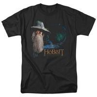 The Hobbit: An Unexpected Journey - The Door