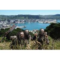 Wellington\'s Lord of the Rings Locations Tour including Lunch