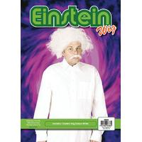 White Men\'s Einstein Mad Scientist Wig