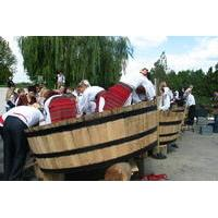 Wine Battle in Purcari Winery from Chisinau