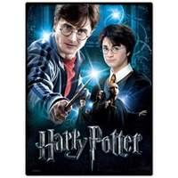 Wrebbit - Harry Potter - Poster Puzzle 500 Pc - Harry Potter